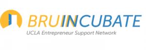 bruincubate logo